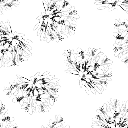 Agapanthus Flower Seamless on White Background. Vector Illustration.