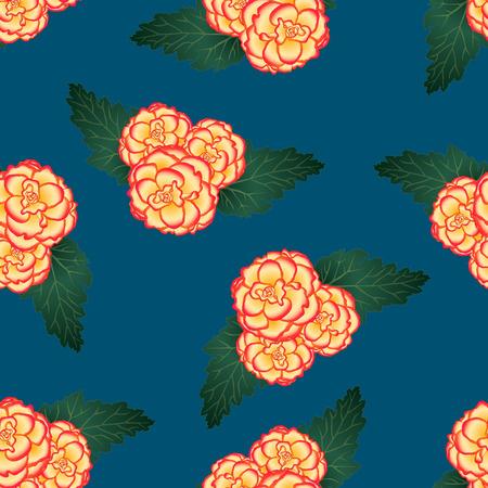 Begonia Flower, Picotee Sunburst on Indigo Blue Background. Vector Illustration.