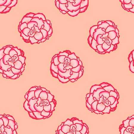 Pink Begonia Flower, Picotee First Love on Light Orange Background. Vector Illustration.