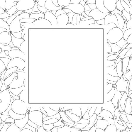 Jasminum sambac - Arabian Jasmine Outline Banner Card. Vector Illustration. Illustration