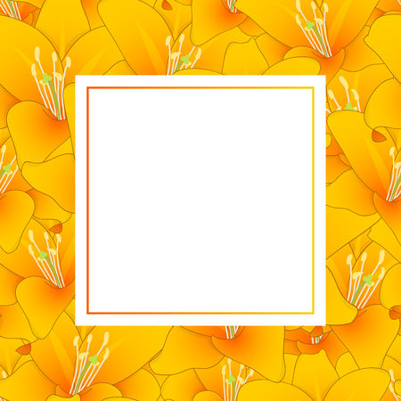 Lilium candidum, the Madonna lily or Orange Lily Banner Card. Vector Illustration.