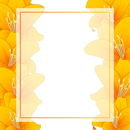 Lilium candidum, the Madonna lily or Orange Lily Banner Card Border. Vector Illustration. Illustration