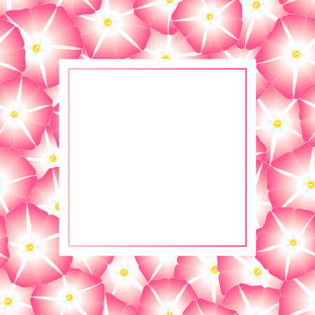 Pink Morning Glory Flower Banner Card. Vector Illustration.