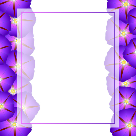 Purple Morning Glory Flower Banner Card Border. Vector Illustration.