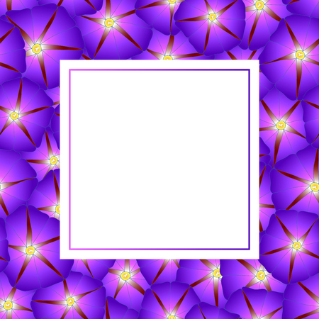 Purple Morning Glory Flower Banner Card. Vector Illustration.