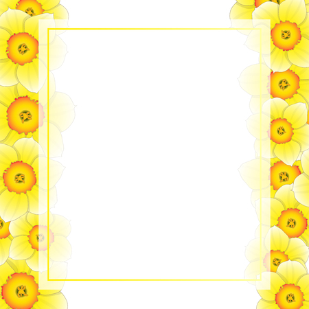 Yellow Daffodil - Narcissus Flower Banner Card Border. Vector Illustration.