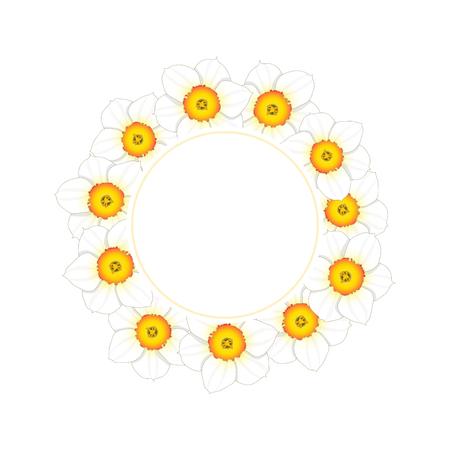 White Daffodil - Narcissus Flower Banner Wreath. Vector Illustration. 向量圖像
