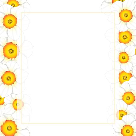 White Daffodil - Narcissus Flower Banner Card Border. Vector Illustration. 向量圖像