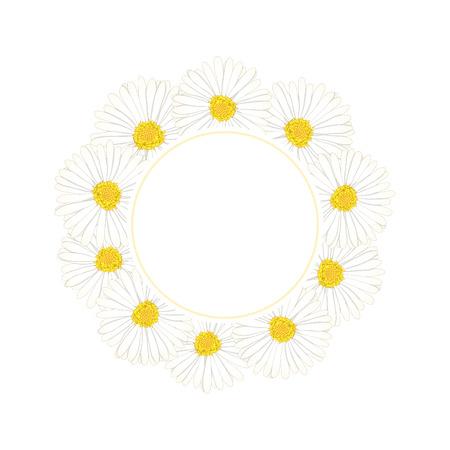 White Aster, Daisy Flower Banner Wreath. Vector Illustration. 向量圖像