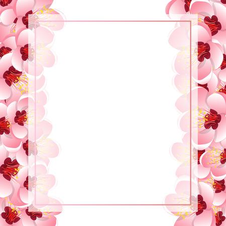Momo Peach Flower Blossom Banner Card Border. Vector Illustration.  イラスト・ベクター素材