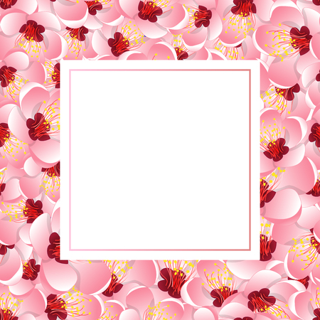 Momo Peach Flower Blossom Banner Card. Vector Illustration.