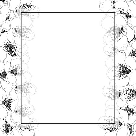 Momo Peach Flower Blossom Banner Card Border Outline. Vector Illustration.  イラスト・ベクター素材