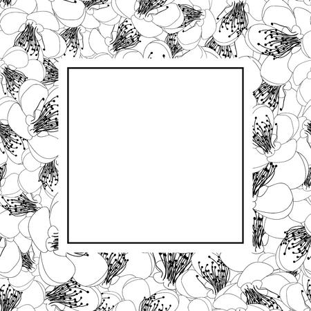 Momo Peach Flower Blossom Outline Banner Card. Vector Illustration.