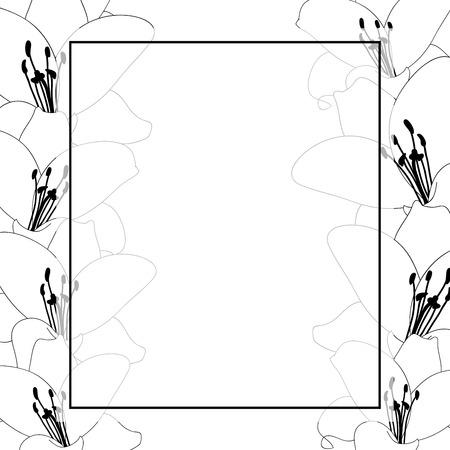 Lily Flower Outline Banner Card Border isolated on White Background. Vector Illustration.