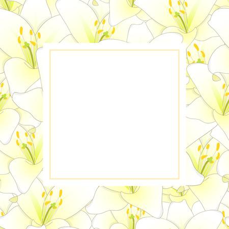 White Lily Flower Banner Card. Vector Illustration.