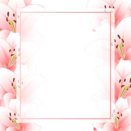 Pink Lily Flower Banner Card Banner Card Border isolated on White Background. Vector Illustration. Illustration
