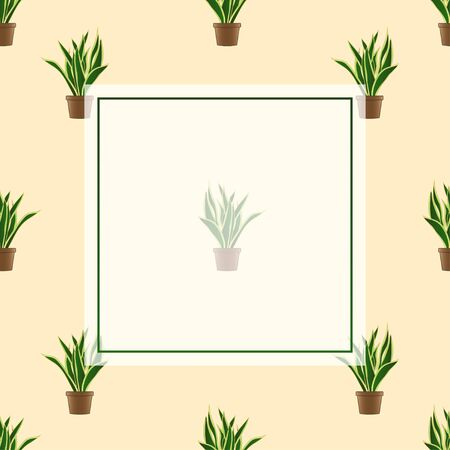 Snake Plant Banner on Ivory Background. Vector Illustration