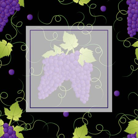 Pueple Grape Banner on Black Background. Vector Illustration. Illusztráció