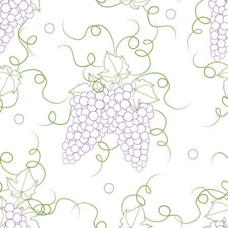 Colorful Line Seamless Grape on White Background. Vector Illustration.