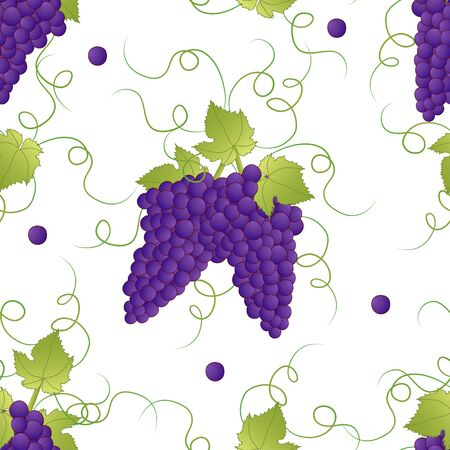 Pueple Grape Seamless on White Background. Vector Illustration. Illusztráció