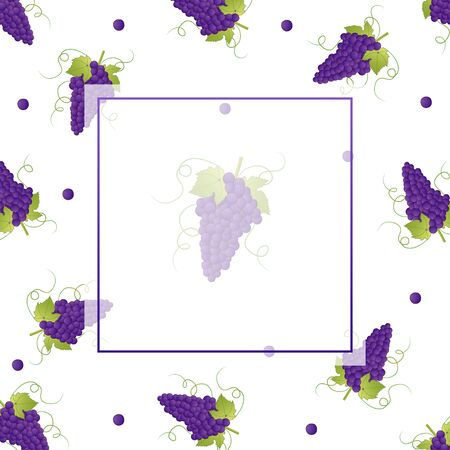 Pueple Grape Banner on White Background. Vector Illustration.