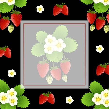 Red Strawberry and Flower Banner on Black Background. Vector Illustration. Illusztráció