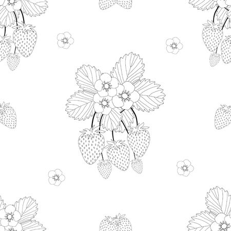 Strawberry and Flower Outline on White Background. Vector Illustration.