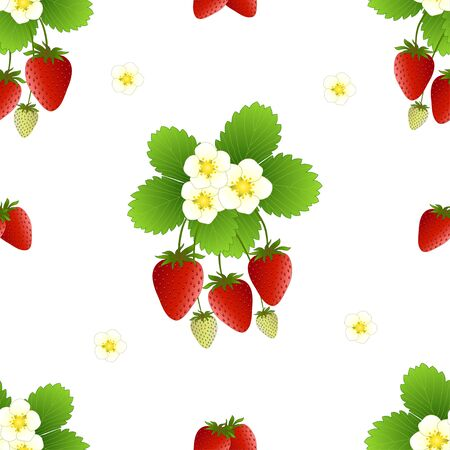 Red Strawberry and Flower on White Background. Vector Illustration. Illusztráció
