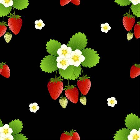 Red Strawberry and Flower on Black Background. Vector Illustration.