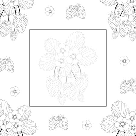 Strawberry and Flower Outline Banner on White Background. Vector Illustration. Illusztráció