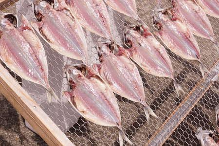Landscape are making dried fish mackerel