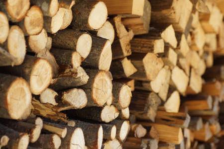 Firewood Imagens