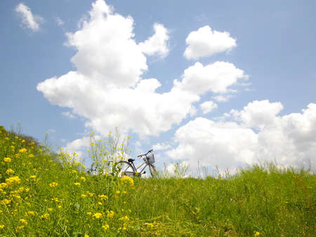 Grassland and bicycle Imagens