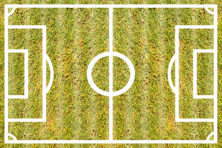 texture grass football Course for design pattern and background.