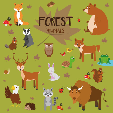 woods: Forest animals vector set.