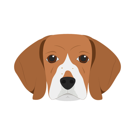 Beagle dog isolated on white background vector illustration Иллюстрация