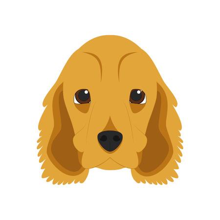 cocker: English Cocker Spaniel dog isolated on white background vector illustration Illustration