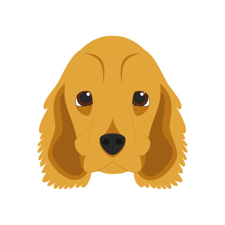 English Cocker Spaniel dog isolated on white background vector illustration Illustration