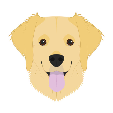 Golden Retriever dog isolated on white background vector illustration  イラスト・ベクター素材