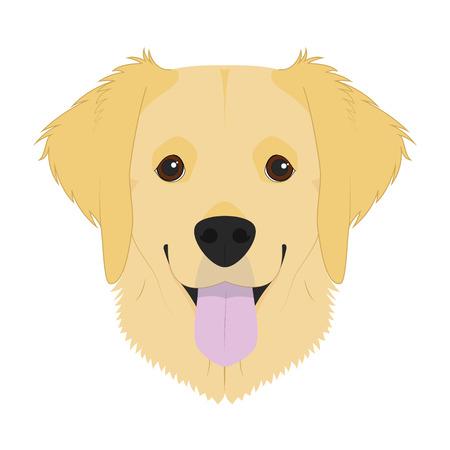 Golden Retriever dog isolated on white background vector illustration Illustration