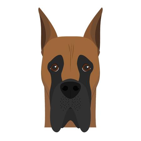 great dane: Great Dane dog isolated on white background vector illustration Illustration