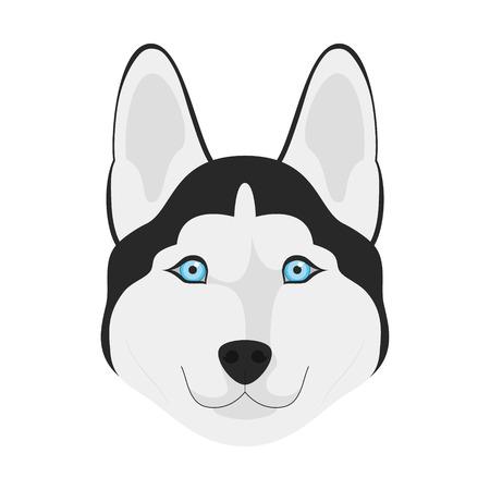 siberian husky: Siberian Husky dog isolated on white background vector illustration Illustration