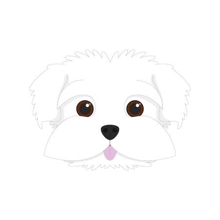 Perro maltés aislado en el fondo blanco ilustración vectorial