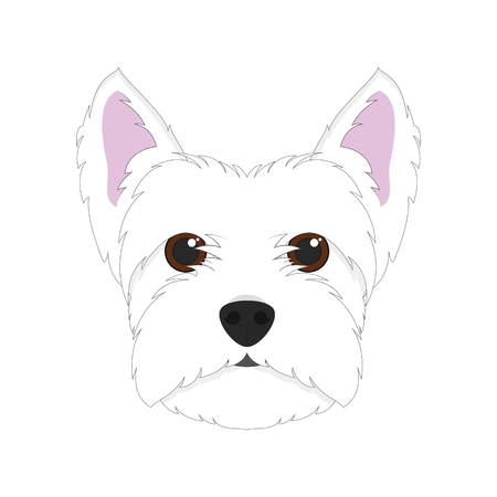 highland: West Highland White Terrier dog isolated on white background vector illustration