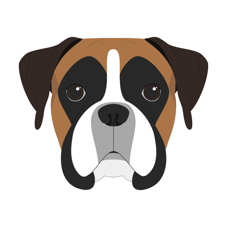 Boxer dog isolated on white background vector illustration Иллюстрация