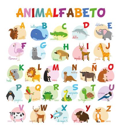 Os desenhos animados bonitos ilustraram o alfabeto com os animais engraçados do jardim zoológico. Alfabeto espanhol. Aprenda a ler. Ilustração vetorial isolado.