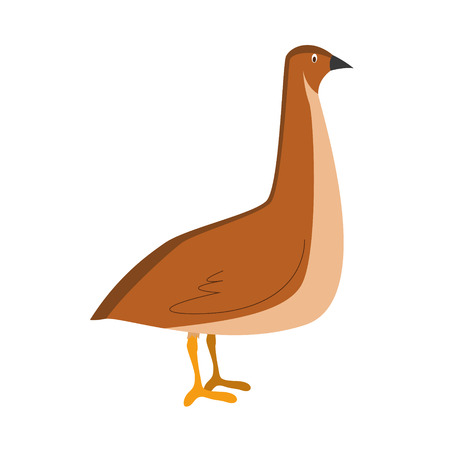 Cute cartoon vector illustration quail