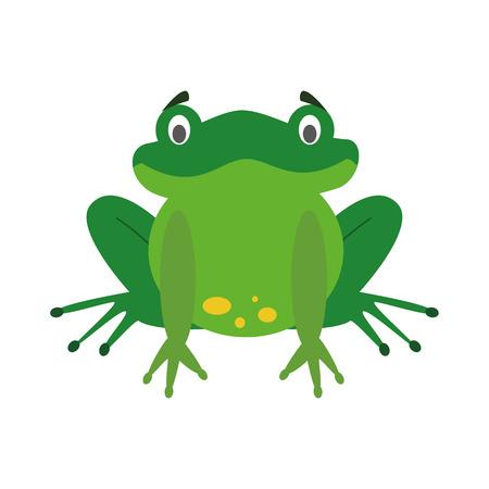Cute cartoon frog vector illustration