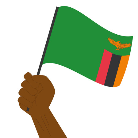 Hand holding and raising the national flag of Zambia Illustration