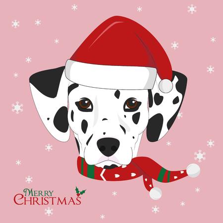 dalmatian: Christmas greeting card. Dalmatian dog with red Santas hat